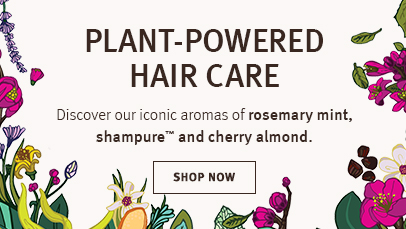 Click shop now button to shop rosemary mint, shampure or cherry almond hair care
