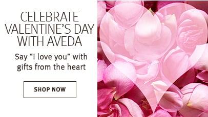 Click shop now button to shop valentines day gifts